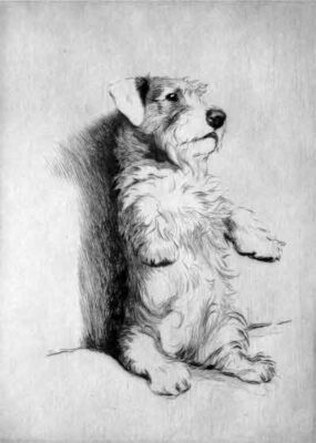 Cecil Aldin signed artist dog etching of For what we are about to receive