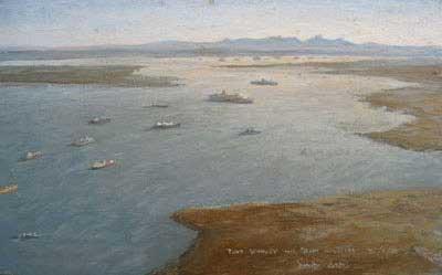 "David Cobb marine artist ""Port Stanley and Port William - Falkland Islands"""