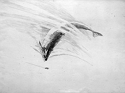 The Lure - by fishing artist Norman Wilkinson