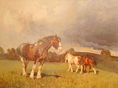 """Shire Horses"" by Equestrian artist Terence Cuneo"