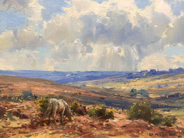 Barry Peckham New Forest-Landscape